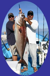 Our Amigo Juan with his 88# Amberjack caught on 20# and iron on Suerte II with Captain Manuel
